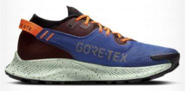 Nike Pegasus Trail 2 GTX, la más cálida de la gama