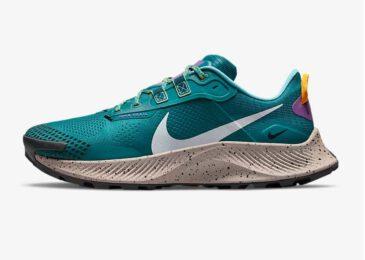 Zapatillas de Trail Running Nike Pegasus Trail 3